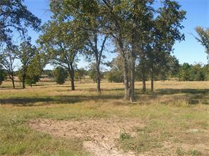 49 williams thomas road, riverside, TX 77320