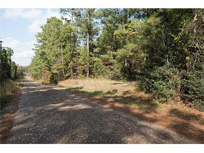 00 county road 3255, colmesneil, TX 75938