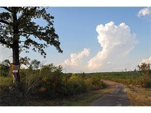 195 ac west prospect road, jefferson, TX 75657