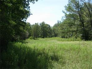 Houston Home at 000 Round Prairrie Huntsville , TX , 77340 For Sale