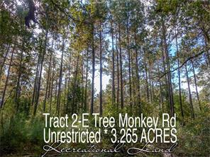 Houston Home at TR 2-E Tree Monkey Road Livingston , TX , 77351 For Sale