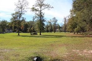 21986 Whitetail, New Caney, TX, 77357