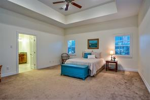 Love this Master Bedroom! Extra large 19'x17' with a deep tray ceiling.  More plantation shutters and double entry doors into the master bathroom is to the left.