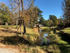 Houston Home at TBD W Lake Drive Livingston , TX , 77351 For Sale
