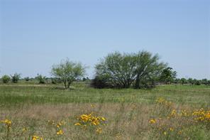 000 johnston road, wallis, TX 77485