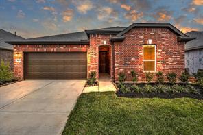 Houston Home at 10079 Cimarron Canyon Lane Magnolia                           , TX                           , 77354 For Sale
