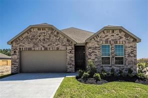 29511 Water Willow Trace Drive, Spring, TX, 77386