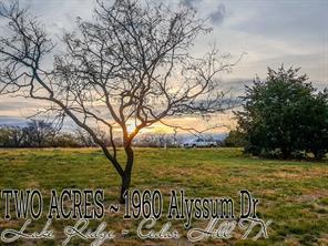 1960 alyssum drive, cedar hill, TX 75104