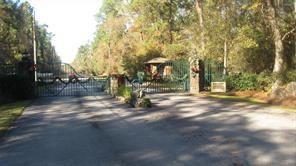 Houston Home at 11 Riata Magnolia , TX , 77354 For Sale