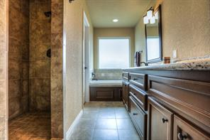 Master bath has a walk-in shower (no glass to wipe down!) as well as a whirlpool tub.