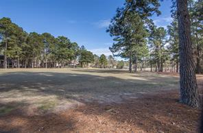This view was taken looking to the right up the fairway toward the tee box.  The cart path is across the fairway from the back of the lot.  There is a deep pine tree buffer between the lot and the golf course.