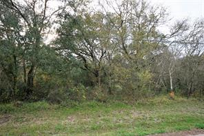 Houston Home at Lot 3 Belt Drive Brazoria , TX , 77422 For Sale
