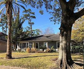 1131 Wynnwood, Houston, TX, 77008