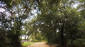 24.5 acres county road 335, caldwell, TX 77836