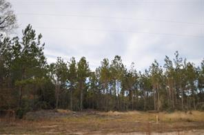 0 County Road 62, Jasper TX 75951