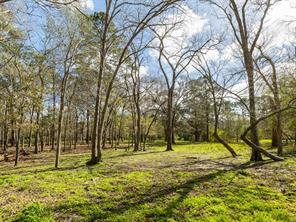 Houston Home at 0 County Road 200 Alvin                           , TX                           , 77511-6594 For Sale