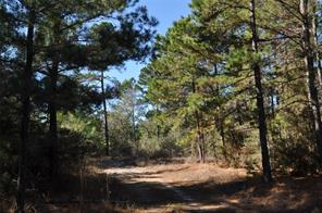 Houston Home at 00 Hopewell Road Road Huntsville , TX , 77320 For Sale