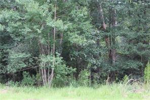 0 Scribe, Roman Forest, TX, 77357