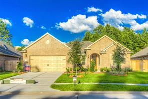 Houston Home at 11 South Elderberry Trail Montgomery , TX , 77316 For Sale