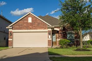 14203 Merganser, Houston TX 77047