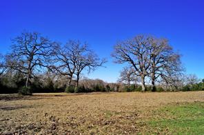 000000 County Rd 352, North Zulch, TX 77872