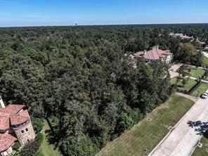 Houston Home at 62 Hallbrook Way The Woodlands                           , TX                           , 77389 For Sale