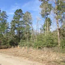 Lot 6A, 6 Deer Haven Circle, Willis TX 77378