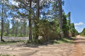 0 camp seale road, livingston, TX 77351