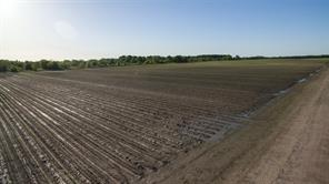 0 county road 15, damon, TX 77430