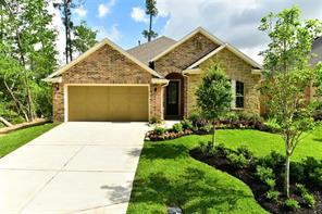 Houston Home at 201 Trillium Park Conroe                           , TX                           , 77304 For Sale