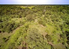00 antioch road, paige, TX 78659
