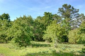 1300 Antioch Road, Paige, TX 78659