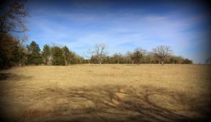 TBD Elmo Rd, Calvert, TX 77837