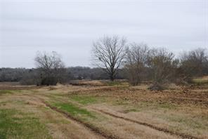 Houston Home at 1068 County Road 183 Nada                           , TX                           , 77460 For Sale