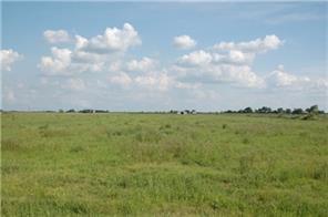 12236 n county line road n, wallis, TX 77485