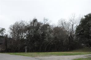 42 Ivy Court, Jones Creek, TX 77541