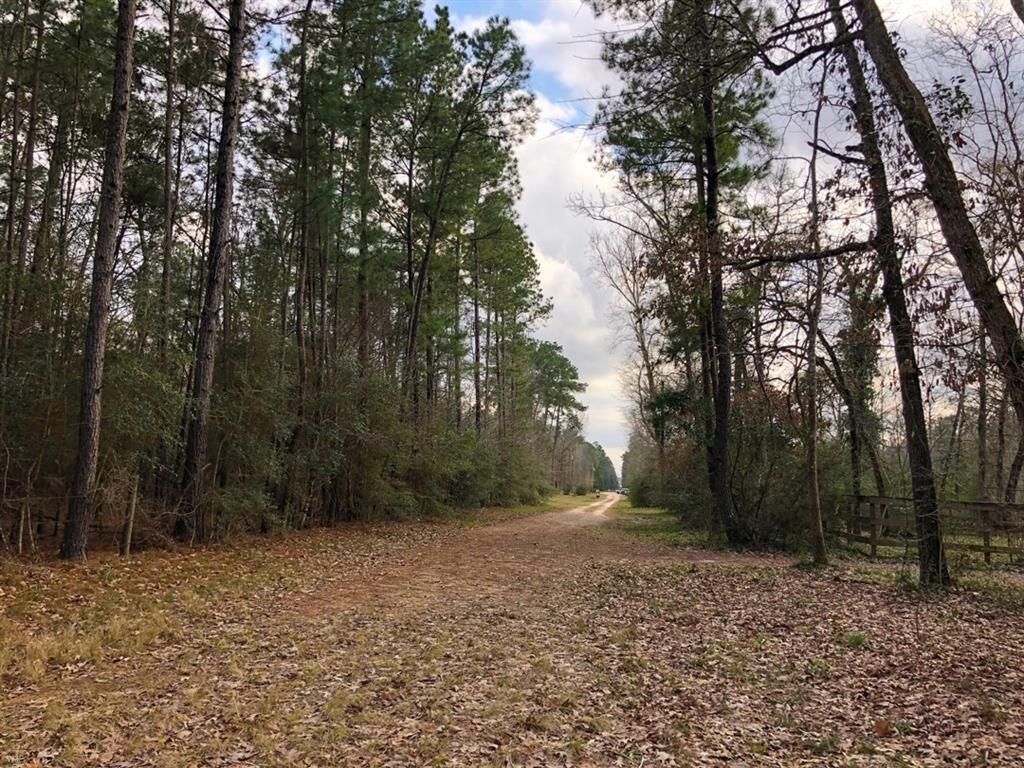93 Ac Gibbs Pipeline Road, Willis, TX 77378