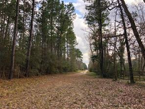 Houston Home at 93 Ac Gibbs Pipeline Road Willis , TX , 77378 For Sale