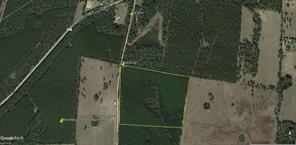 NA Holmes Bottom Road, Pennington, TX 75856