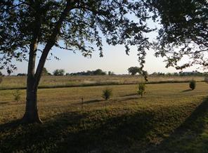 0 Moore Ranch Road, Orchard, TX 77464