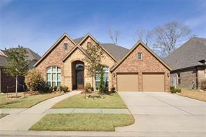 Houston Home at 23315 Robinson Pond Drive New Caney                           , TX                           , 77357-1603 For Sale