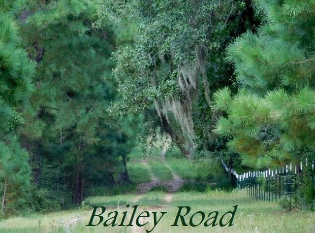 0 Bailey Road Road, Alleyton, TX 78935