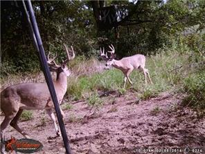 EST County Road 125, Dime Box, TX 77853