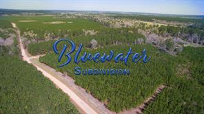 Houston Home at 16.8 Ac Bluewater Road Schwab City , TX , 77351 For Sale