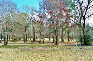 Houston Home at 92 Hillsborough Drive Huntsville , TX , 77340 For Sale