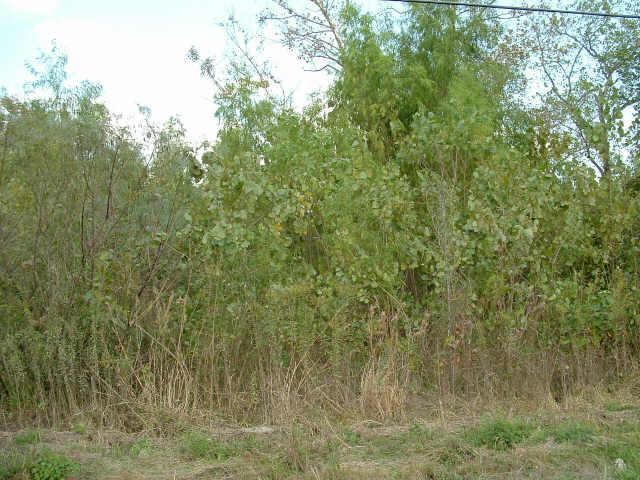 0 N Greens Road, Humble, TX 77396