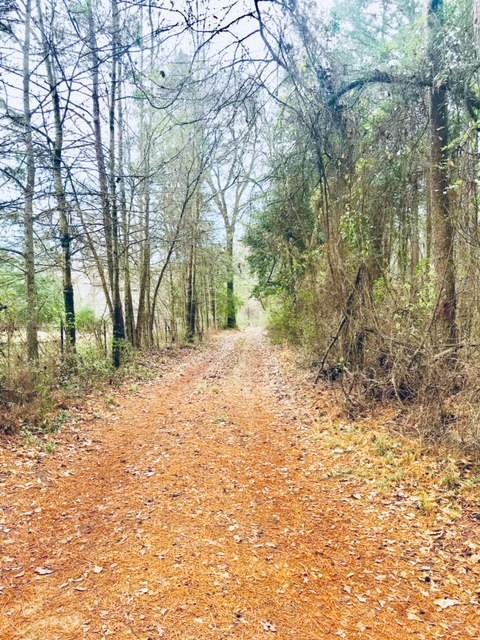 1654 Forest Service Rd 524, Crockett, TX 75835