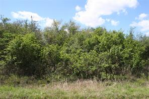 Houston Home at Lot 9 Cuarto Brazoria , TX , 77422 For Sale
