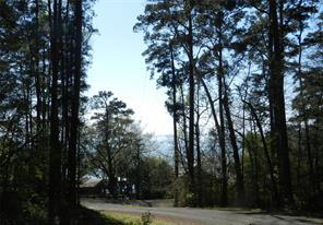 Houston Home at TBD White Oak Hills, Lot 10 Hills Onalaska , TX , 77360 For Sale