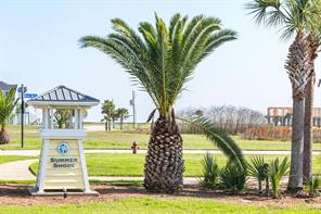 Houston Home at 25623 Spotted Sandpiper Drive Galveston , TX , 77554-3029 For Sale